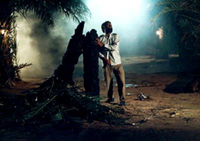 فیلم سینمایی افق