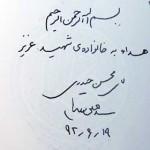 shahidmohsen