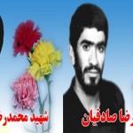 shahid-sadeghiyan