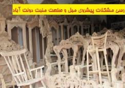 منبت-کاری-دولت-آباد-133-244x172