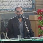 محمود شريفي