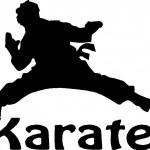 8hof_karate