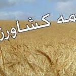 بیمه کشاورزی