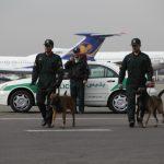 پلیس فرودگاه