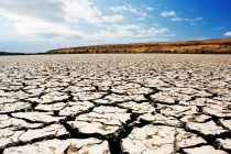 2_world_day_to_combat_desertification_and_drought