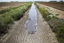 California Drought Federal Water   FX113