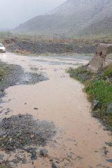 بارش باران در نطنز