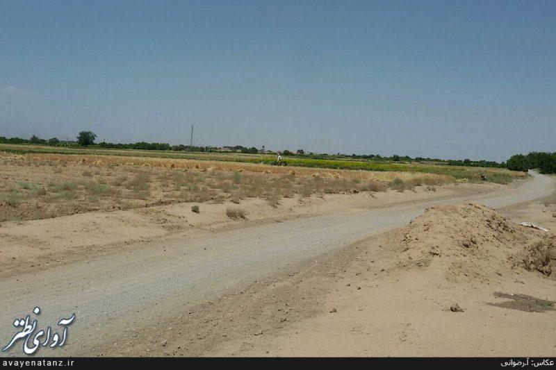برداشت جو در سطح ۹۰۰ هکتار از مزارع شهرستان نطنز آغاز شده است/ تصاویر