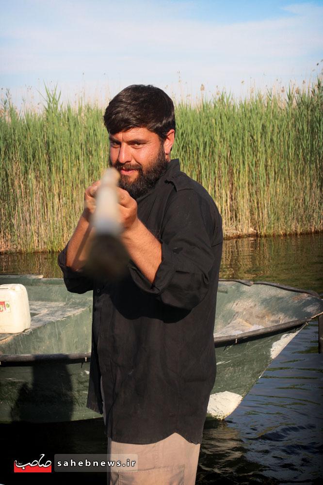 شهید جواد محمدی (5)