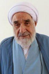 حجت الاسلام انصاری-نطنز