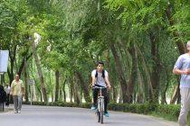 najvan health road