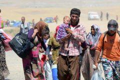 مرگ دلخراش 18 کودک آواره عراقی