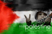 غزه 12