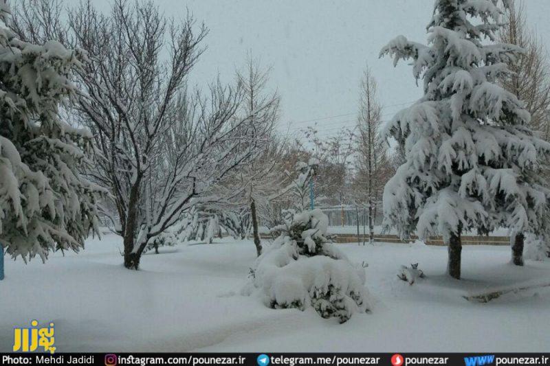 برف فریدونشهر