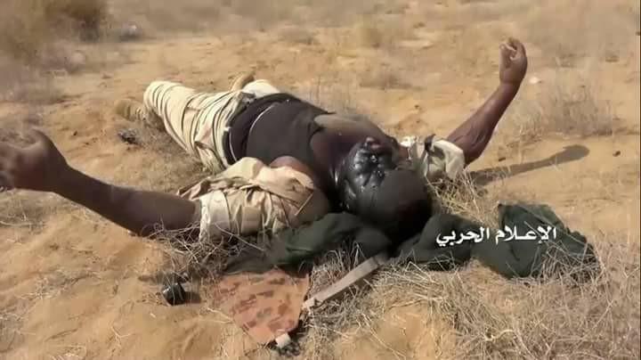yemen (21)
