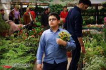 بازا گل و گیاه (10)