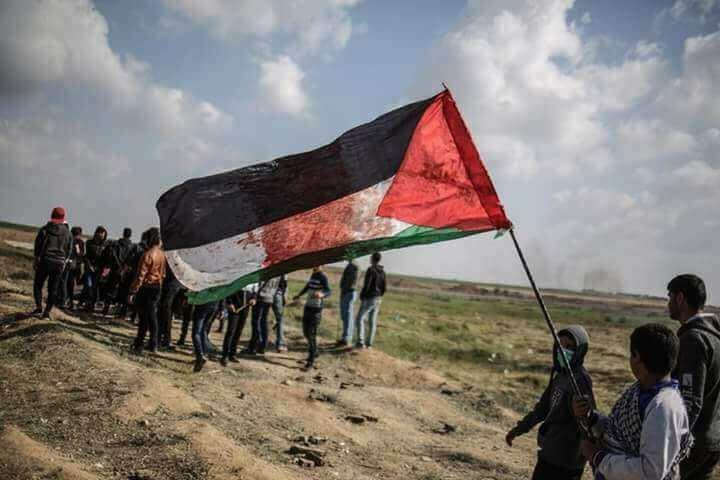palestin (2)