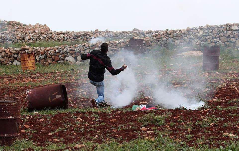 palestin (5)