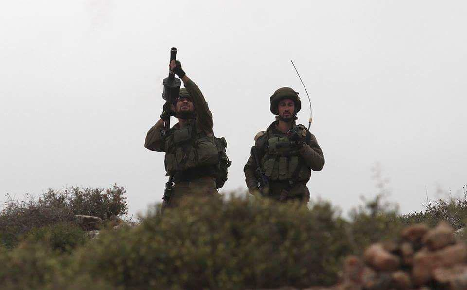 palestin (6)