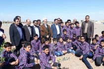 کاشت درخت در اردستان