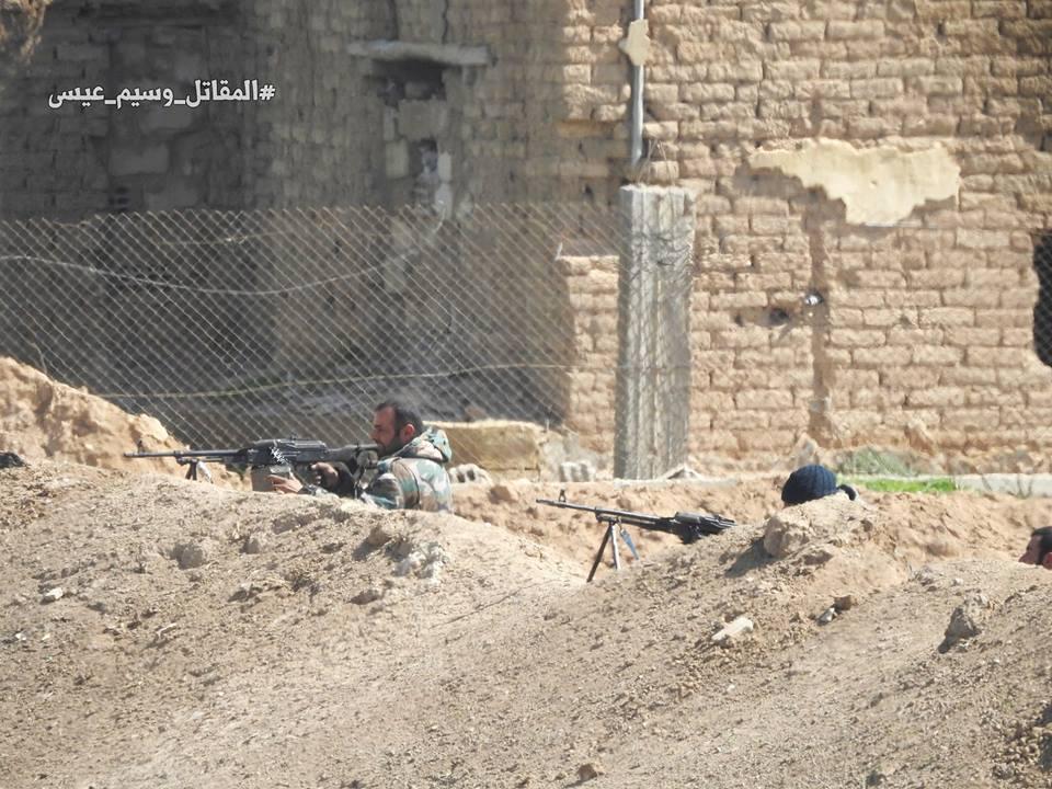 syria1 (8)