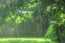 بارش باران. نطنز