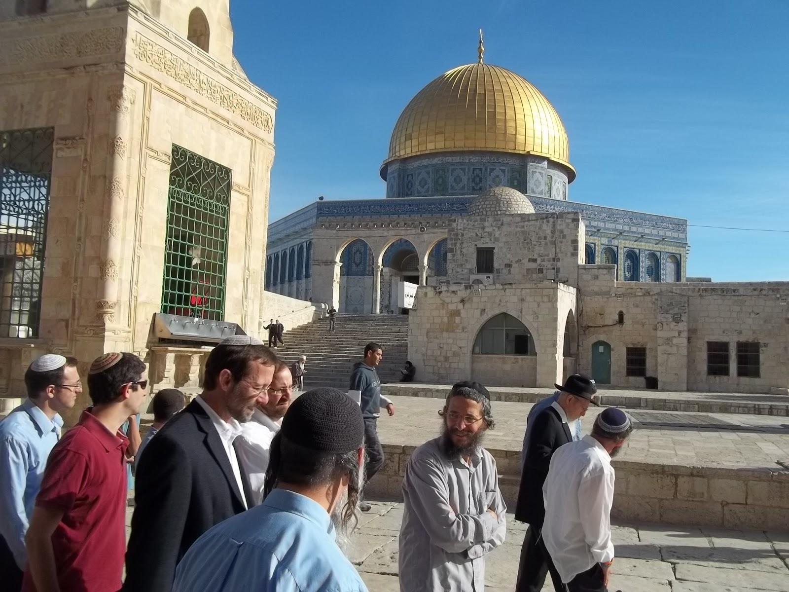 فلسطین (10)