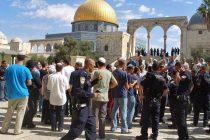فلسطین (12)