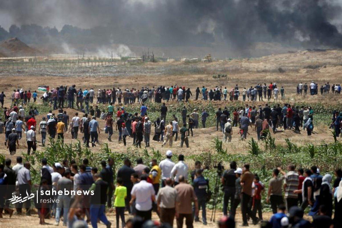 فلسطین (24)