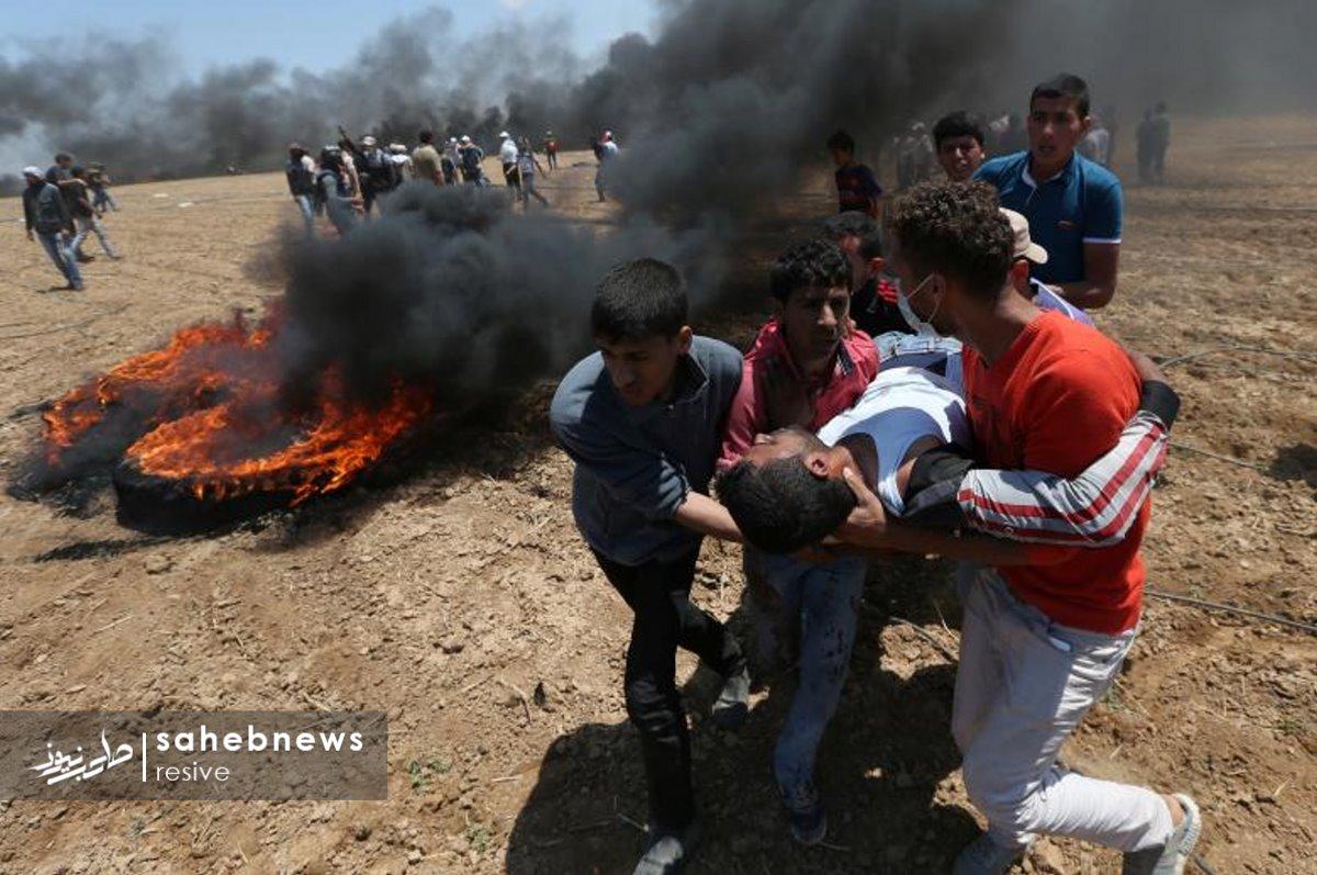 فلسطین (25)
