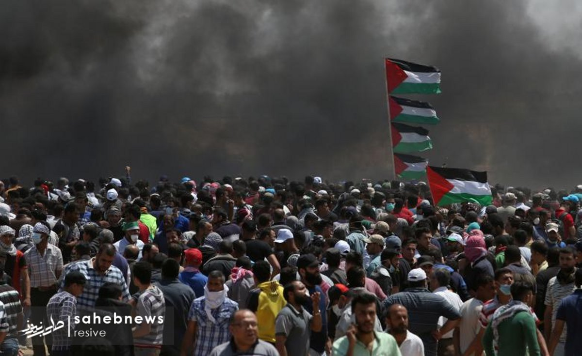 فلسطین (26)
