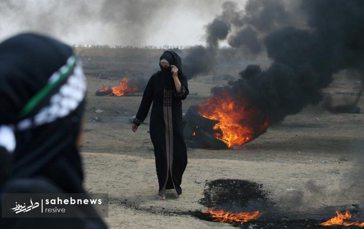 فلسطین (3)