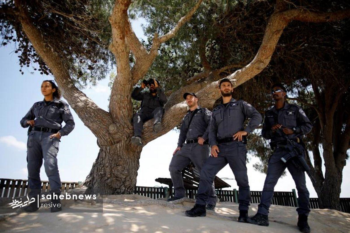 فلسطین (30)