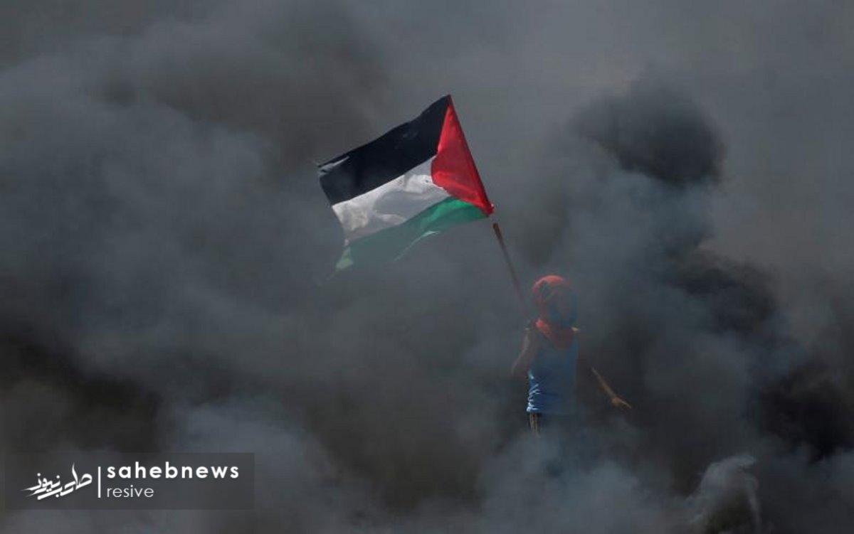فلسطین (31)