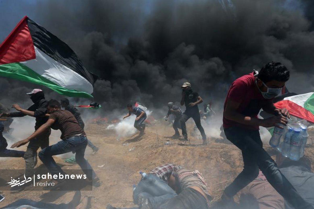 فلسطین (33)