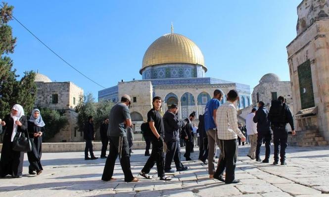 فلسطین (4)