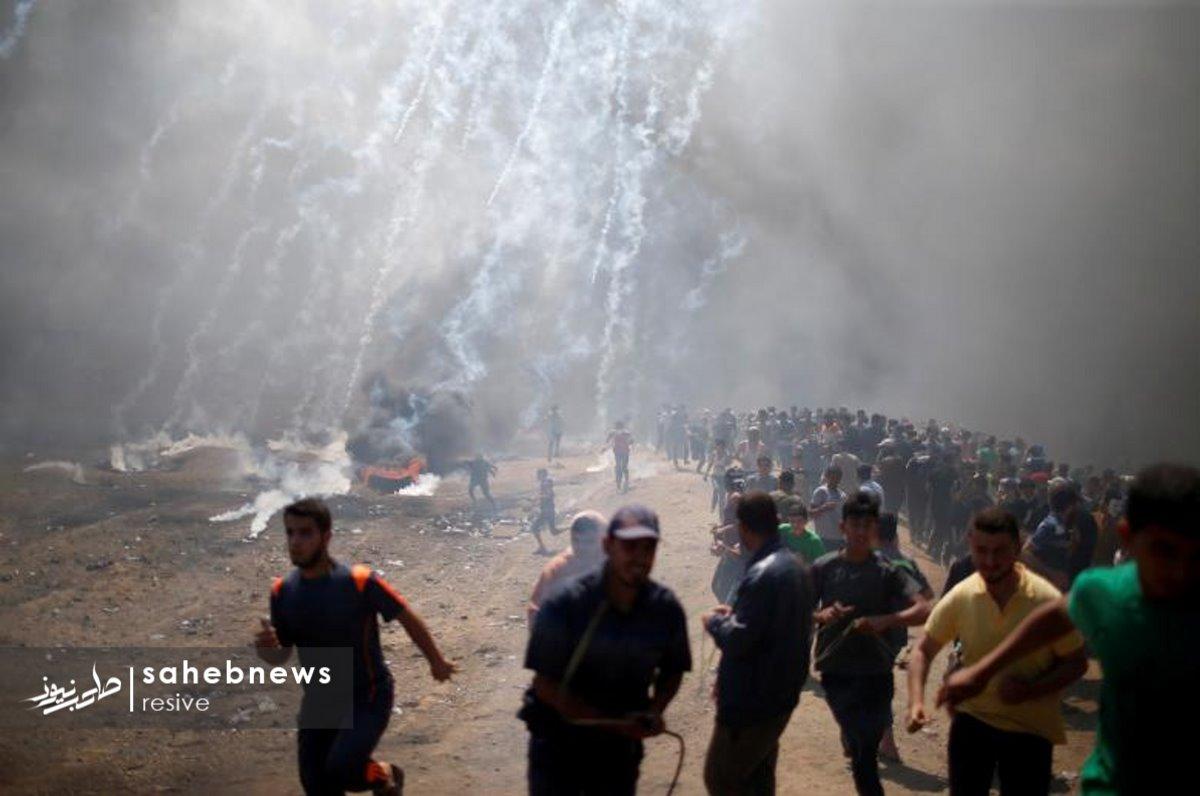 فلسطین (5)