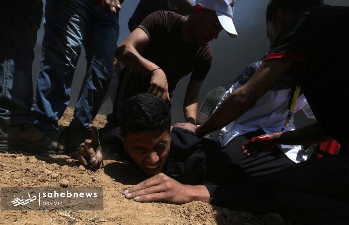 فلسطین (6)