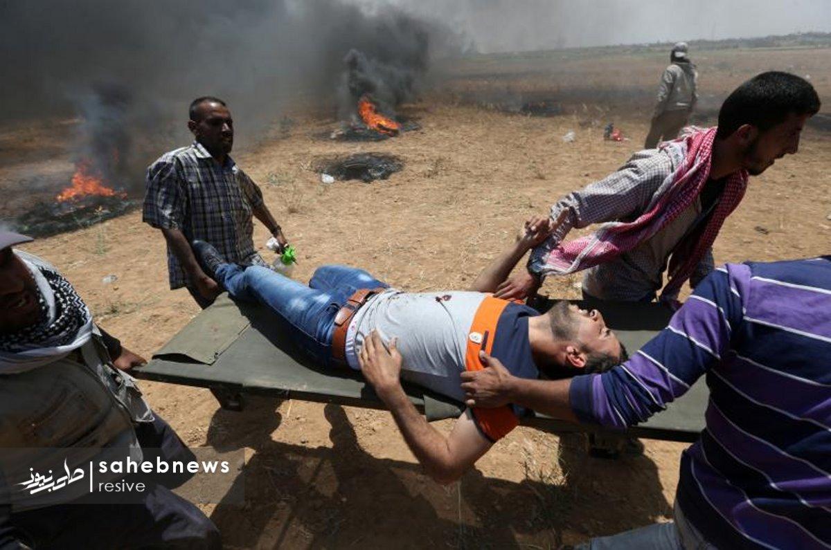 فلسطین (7)