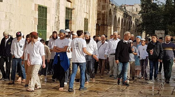 فلسطین (9)