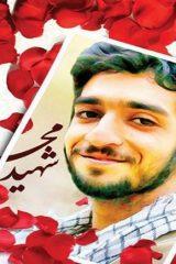 شهید حججی