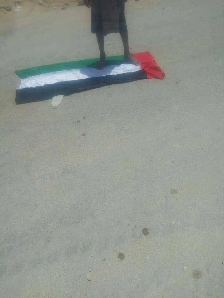 تظاهرات یمن (14)