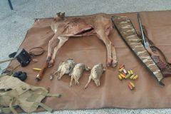 دستگیری متخلف شکار