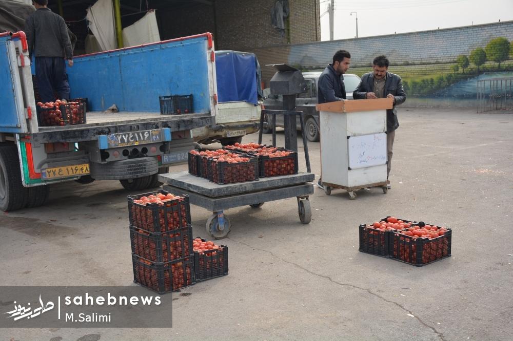 خمینی شهر - بازار میوه و تره بار (2)