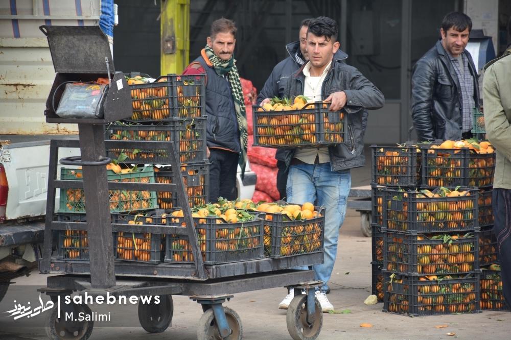 خمینی شهر - بازار میوه و تره بار (35)