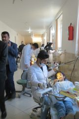 دندان 4