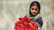 کودکان-کار-ایران-min
