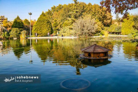 نمایشگاه گل های داوودی اصفهان (14)