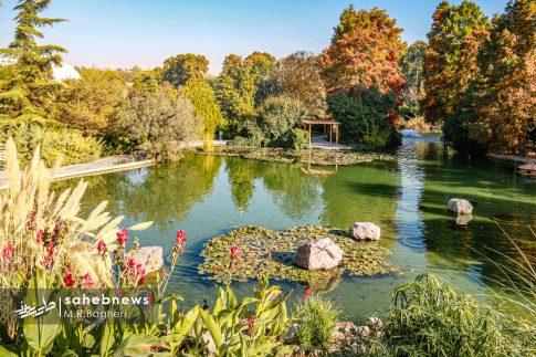 نمایشگاه گل های داوودی اصفهان (16)