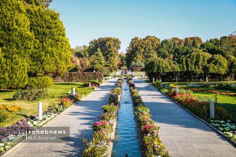 نمایشگاه گل های داوودی اصفهان (19)